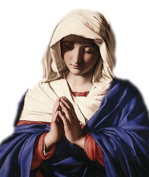 איברי-מין נעלמים, התגלות מריה הקדושה ואשליות המוניםנוספות