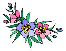 פרחי באך-2